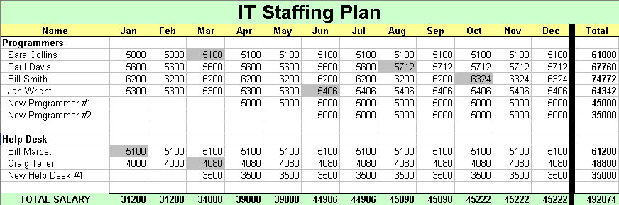 staffing plan The best starting point for a staffing or people strategy is your organization's  business plan, which should contain both short-term and long-term.